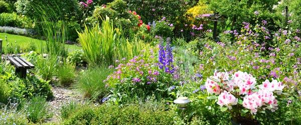 Gartentrend wilder Garten